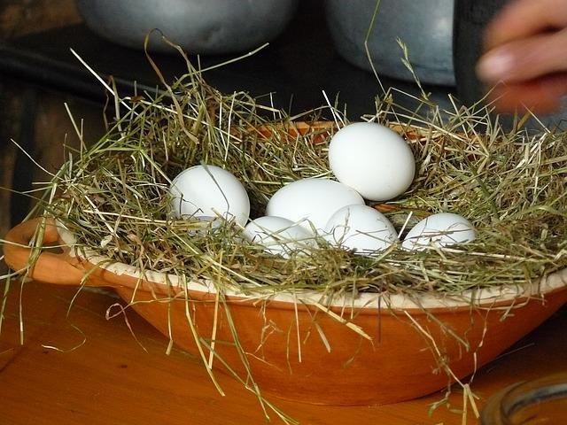 egg-351814_640